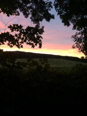 Summer Sunset 2