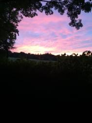Summer Sunset 3