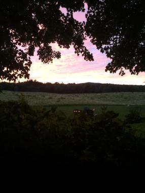 Summer Sunset 4