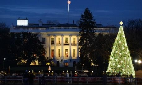 White house xmas